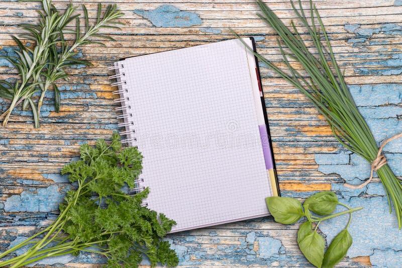 öppet recept för bok royaltyfri bild