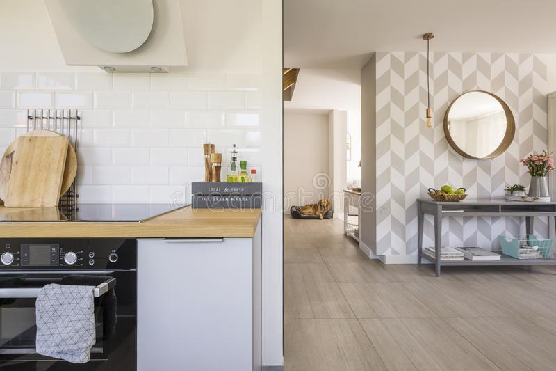 Öppet utrymmekökinre med den moderna ugnen och kryddor på räkning royaltyfria foton
