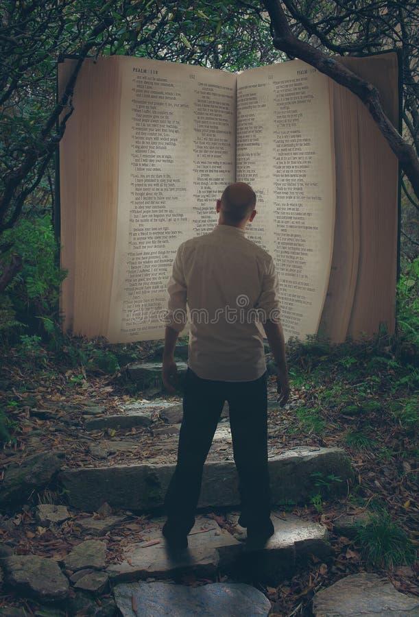 Öppna bibeln i skog arkivfoton