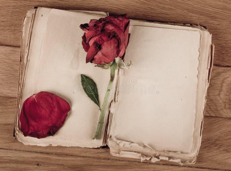 Öppna den gamla boken med tomma sidor för text och torka rosa på trätabellen arkivbilder