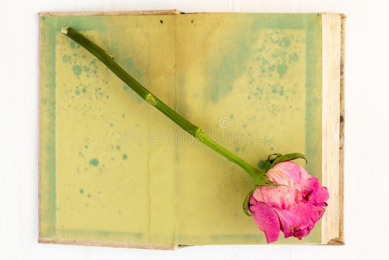 Öppna den gamla boken och torka rosa arkivfoto