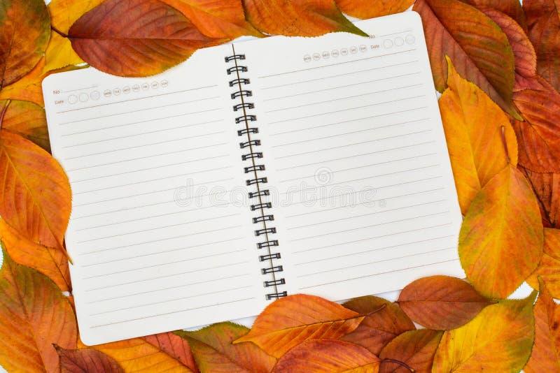 Öppna den tomma anteckningsboken med stupade höstsidor arkivfoton