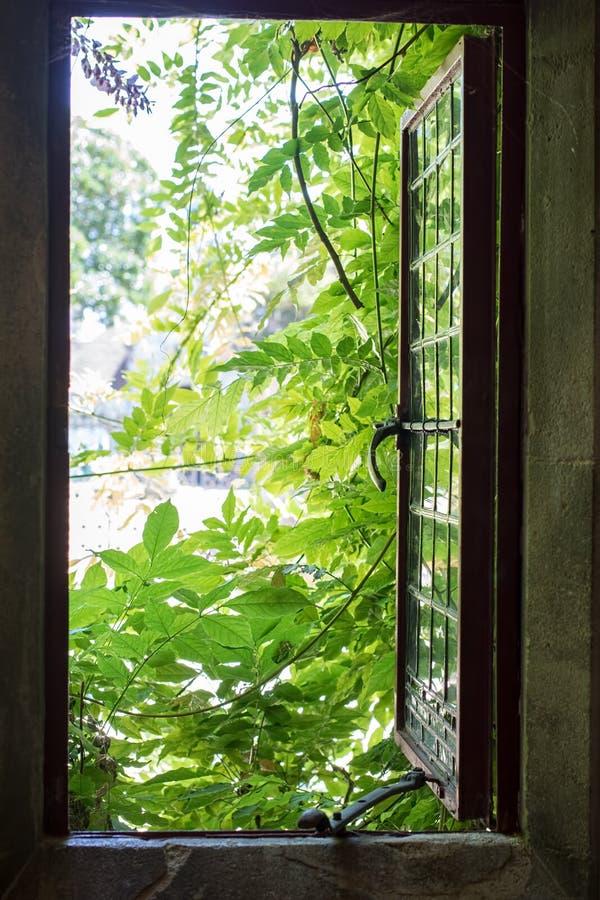 öppna tillfällefönstret Frihet och lämna hem Positiv nolla fotografering för bildbyråer