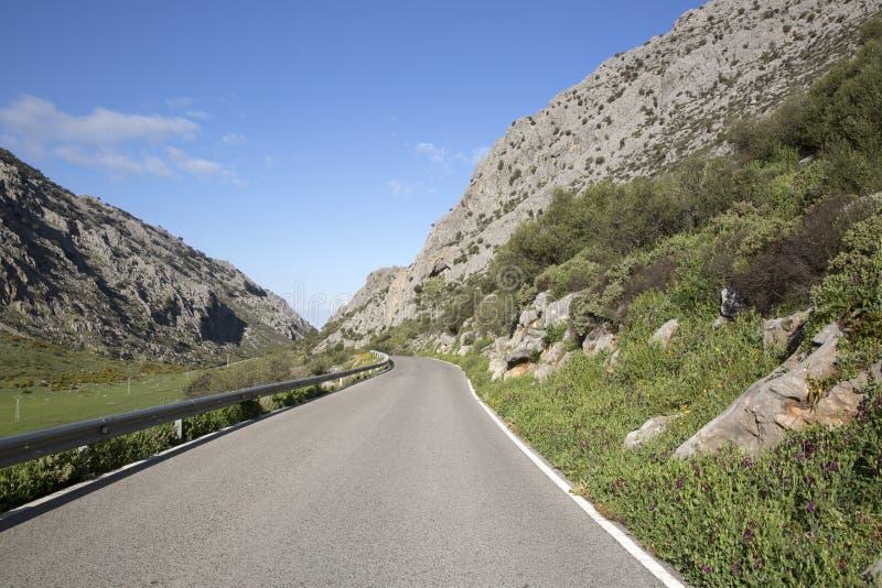 Öppna vägen i den Grazalema nationalparken royaltyfria bilder