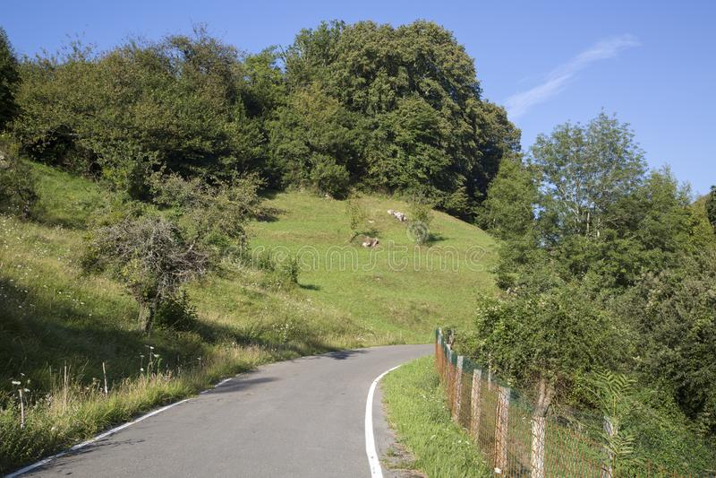 Öppna vägen, Picos de Europa Berg; Austurias arkivfoton