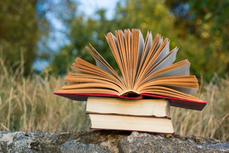 Öppnad inbunden bokbokdagbok, fläktade sidor på royaltyfri bild