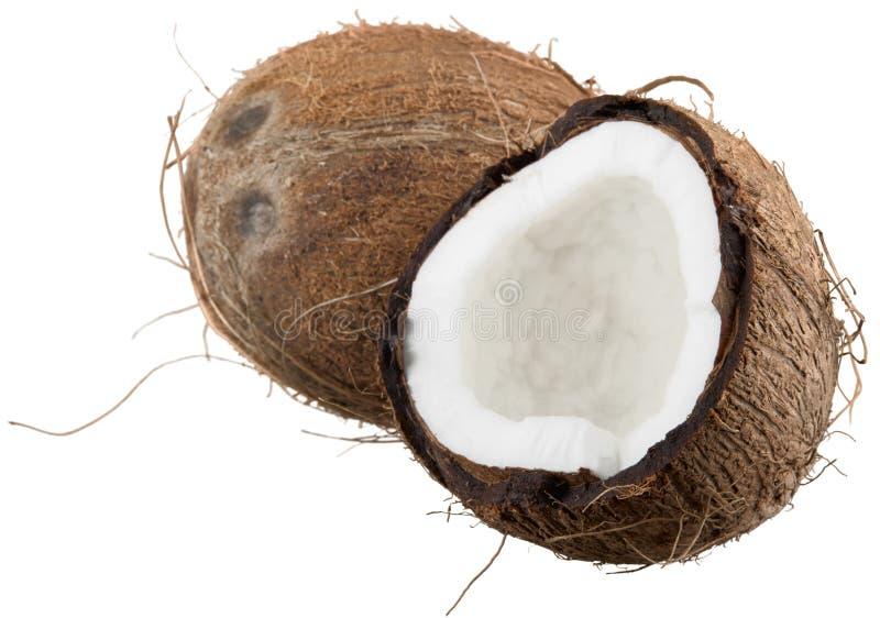 öppnad kokosnöt royaltyfria bilder