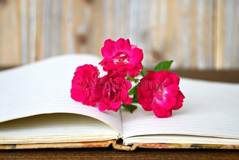 Öppnade bok och rosor arkivfoton