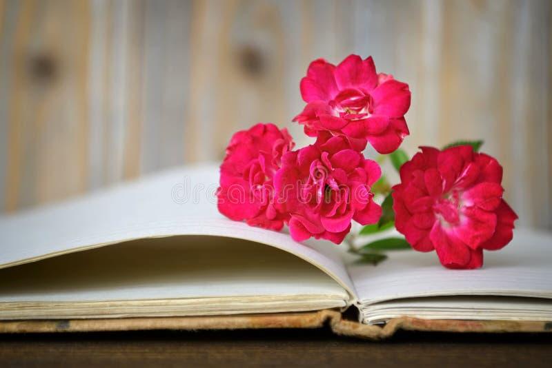 Öppnade bok och rosor royaltyfria bilder