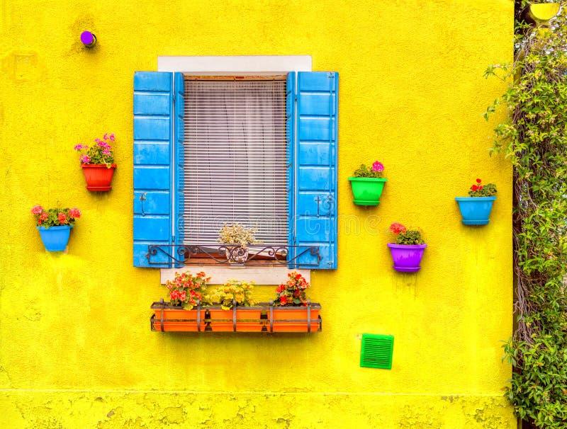 ?ppnat f?nster med bl?a slutare p? en gul v?gg Med r?tt, gr?nt, apelsinen som, ?r bl?a, och purpurf?rgade blomkrukor arkivfoto