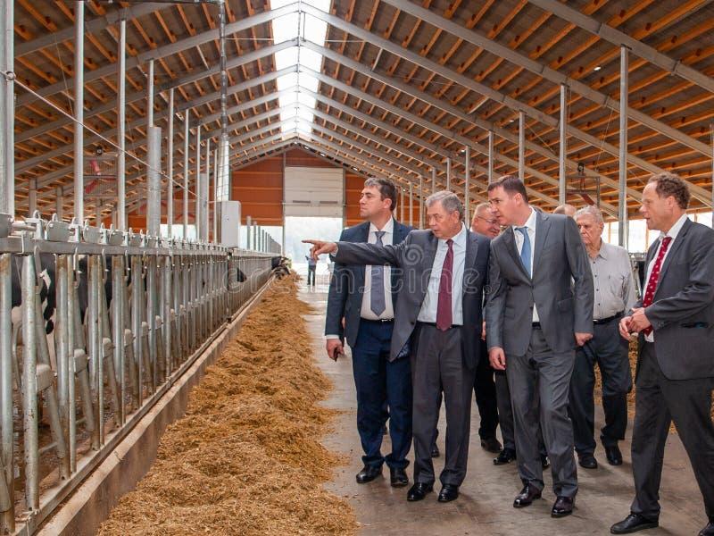 Öppning av boskapkomplexens Ulanovo 'i den Kaluga regionen av Ryssland arkivfoton