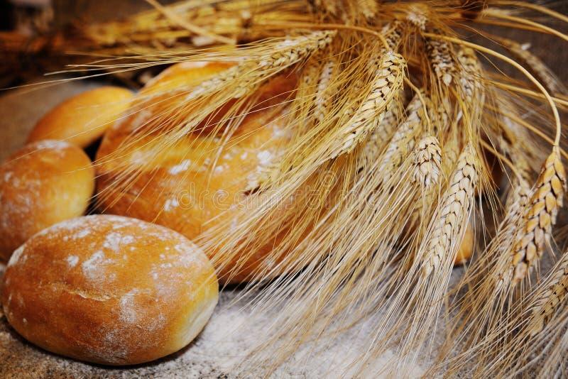 Öron av vete på en bakgrund av bröd royaltyfria bilder