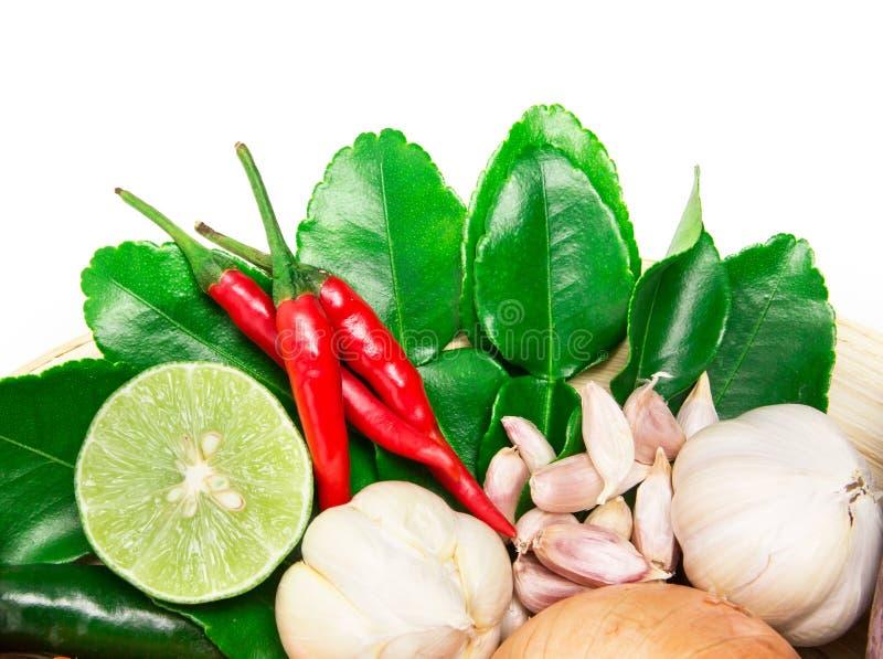 Ört- och kryddaingredienser för asiatisk mat på vit bakgrund arkivfoton