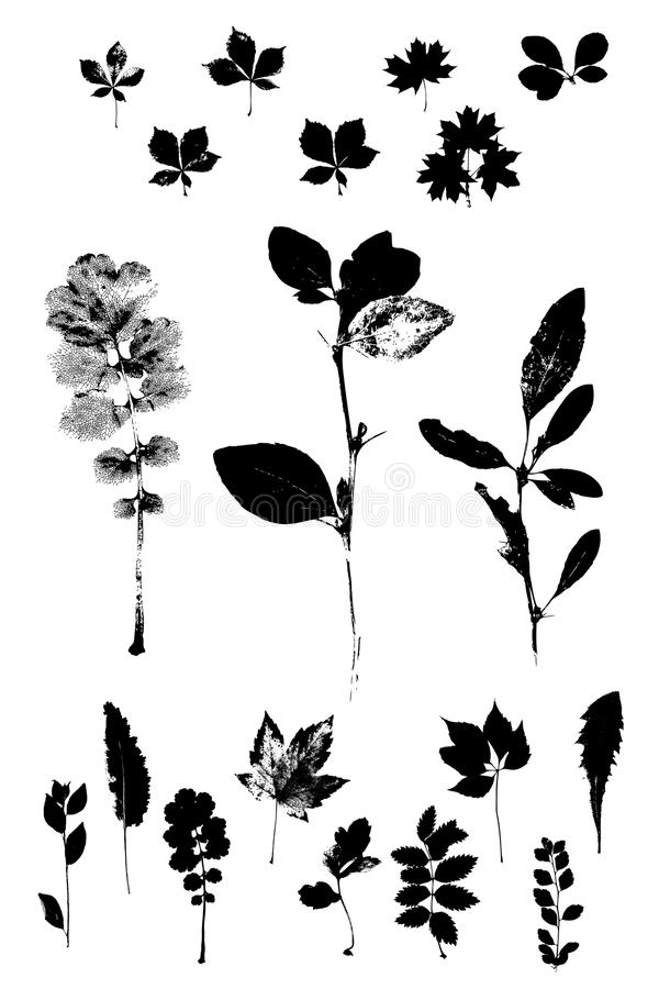 örtar stock illustrationer