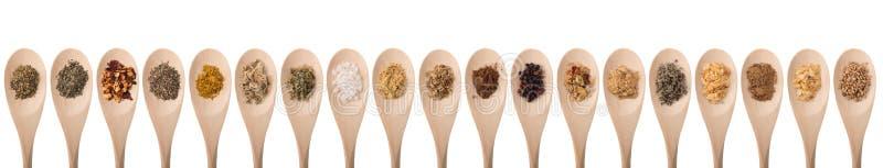 örtar för fjärdcardamonvitlök blad vanilj för kryddor för pepparrosmarinar salt