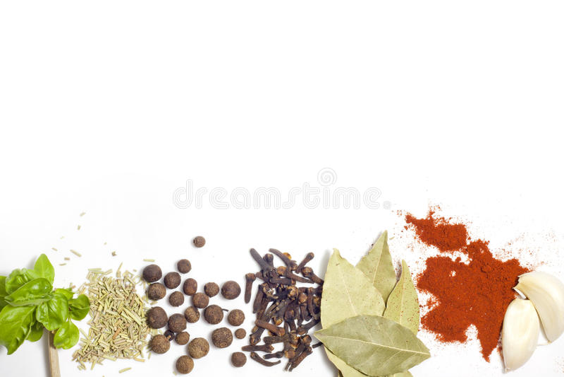 Örtar och kryddakant royaltyfri foto