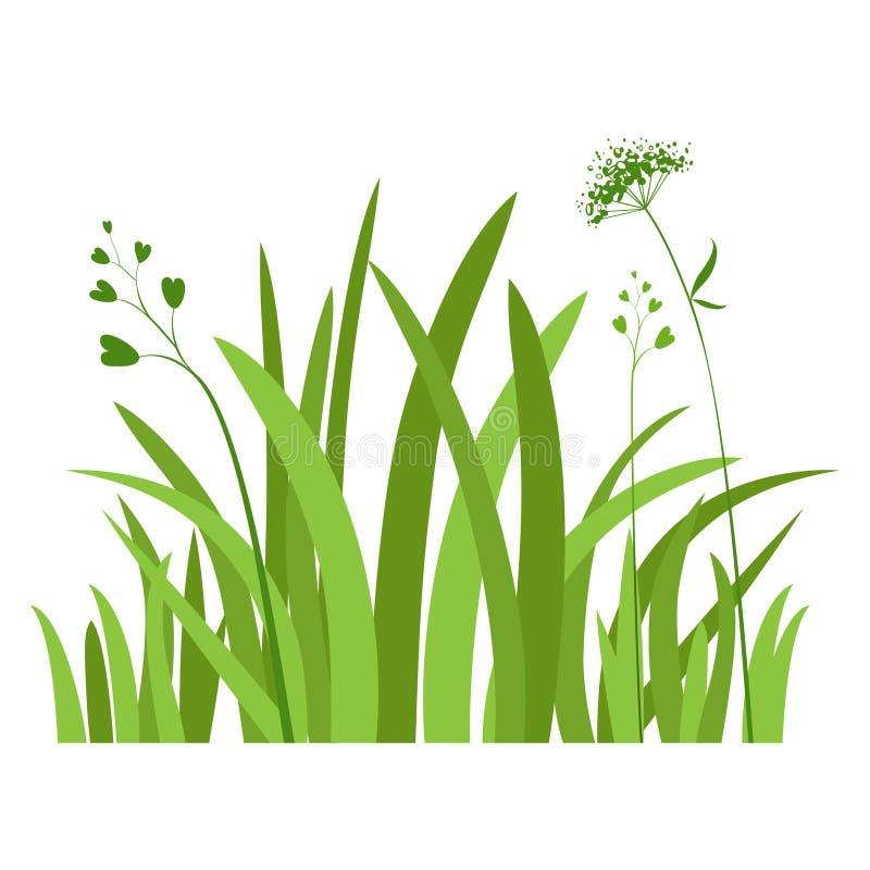 Örter för grönt gräs stock illustrationer