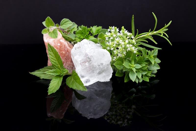 Örter och att salta kristaller royaltyfri fotografi