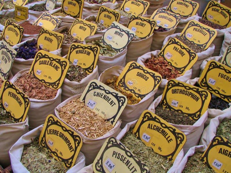 Örter och kryddor royaltyfri fotografi