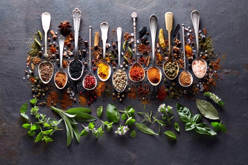 Örter och kryddor på svart bräde royaltyfria bilder