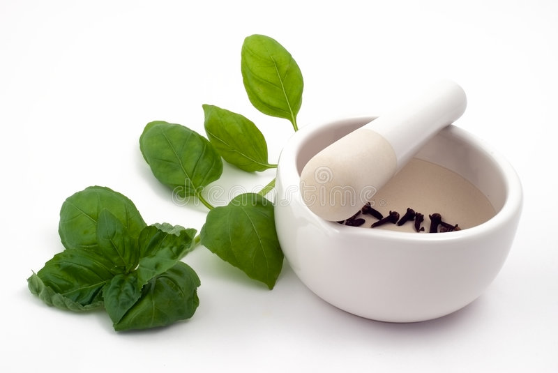 örtmortel kryddar white royaltyfria bilder