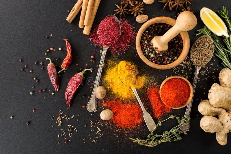 Örtsmaktillsatser och kryddor royaltyfri bild