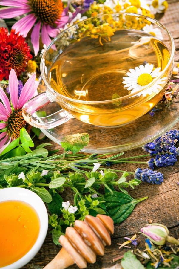 Örtte med honung royaltyfria foton