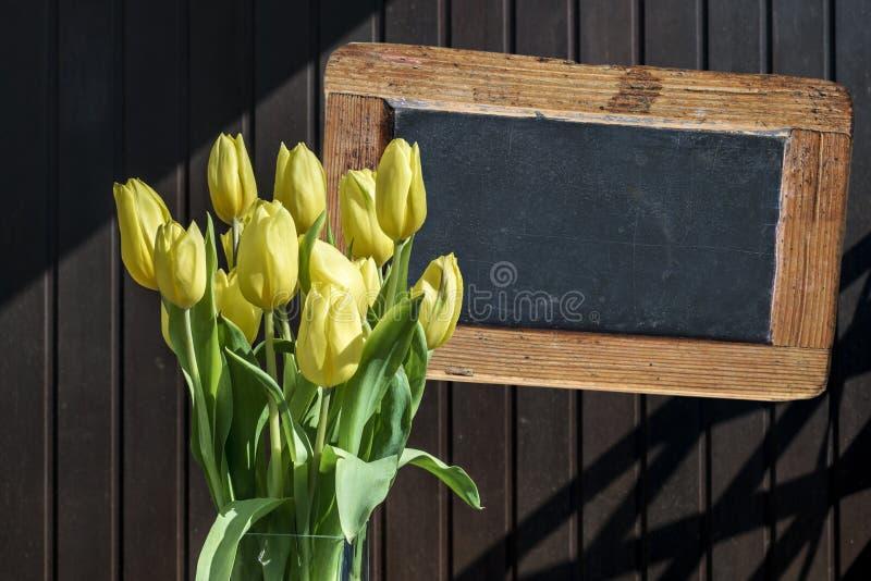 Ösregnar härliga gula tulpan för träsvart tavlacopyspacetecken bakgrund för brunt för vårblommatulpan arkivbild