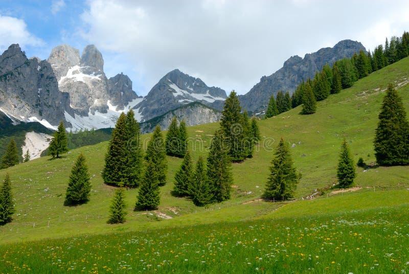 Österreich-Alpen lizenzfreie stockfotos