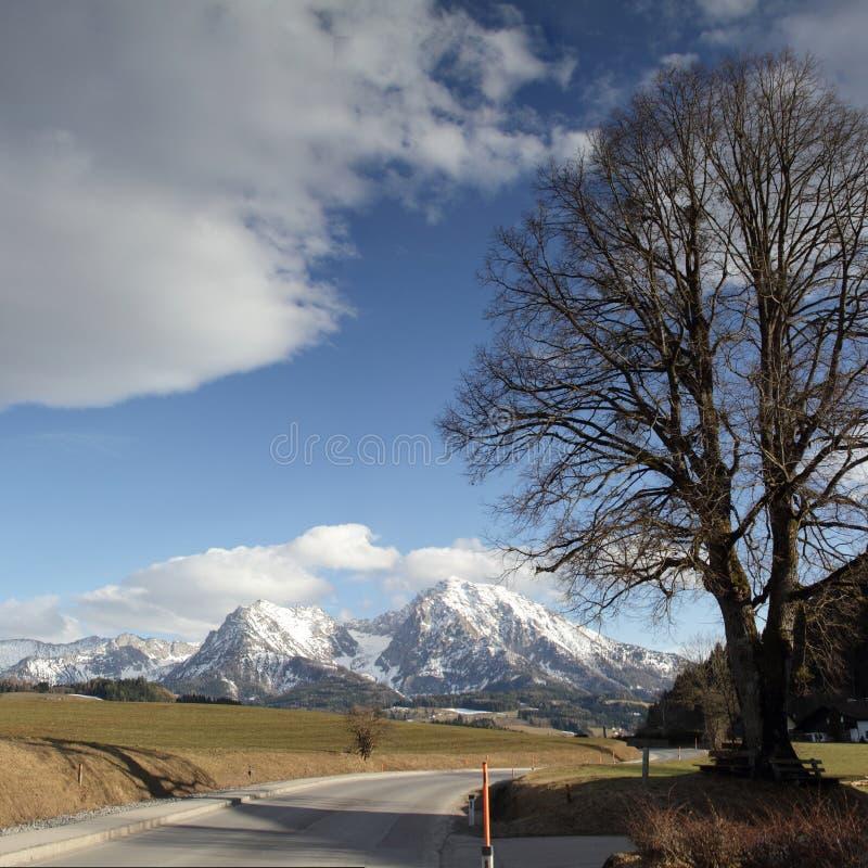Österreich alpen lizenzfreie stockfotos