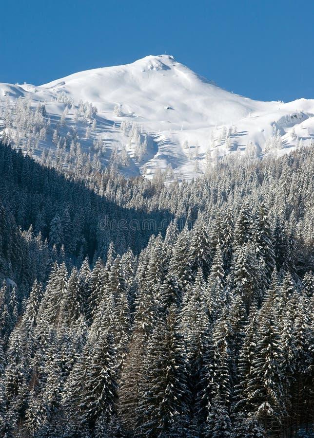 Österreich | schneebedeckter Berg lizenzfreie stockfotos