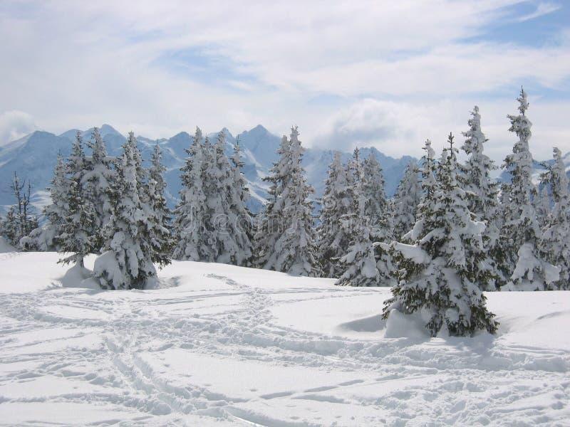 Österreich-/Snowy-Winterlandschaft lizenzfreie stockfotos