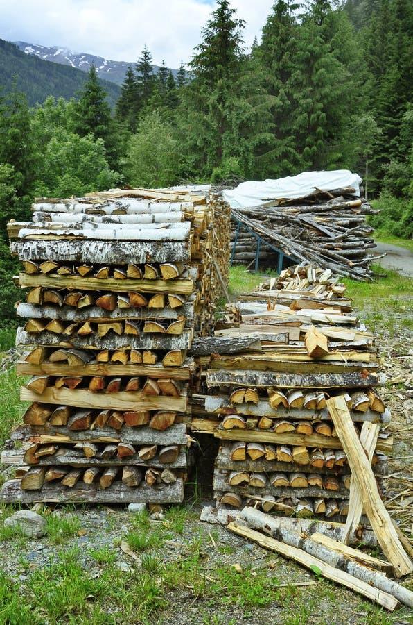 Österreich, Tirol, Forstwirtschaft stockbilder
