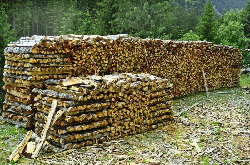 Österreich, Tirol, Forstwirtschaft stockfotografie