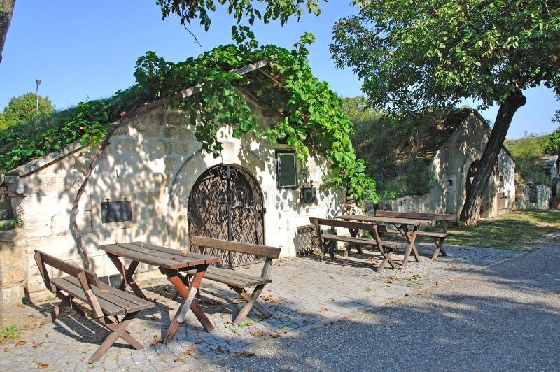 Österrike burgenland förvara i källare wine royaltyfria foton