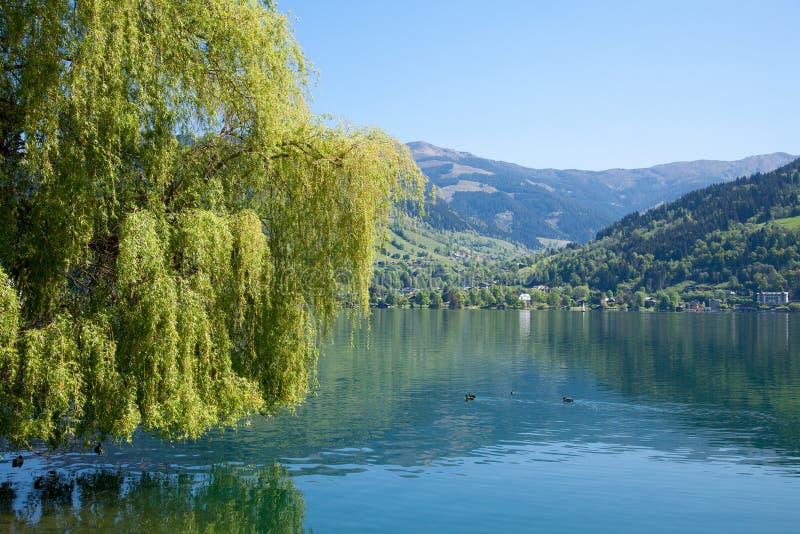Österrike ser zell royaltyfria bilder
