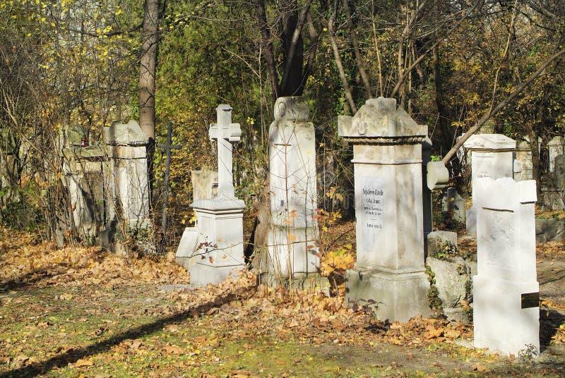 Österrike Wien, Biedermeier kyrkogård arkivfoto