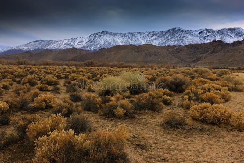 Östliche Sierra stockfoto