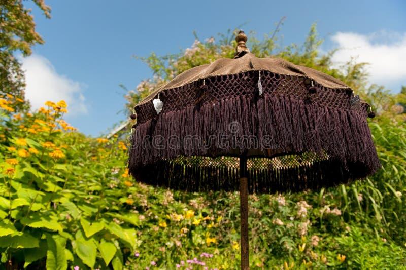 Asiatischer Sonnenschirm östlicher asiatischer sonnenschirm stockfoto bild asiatisch