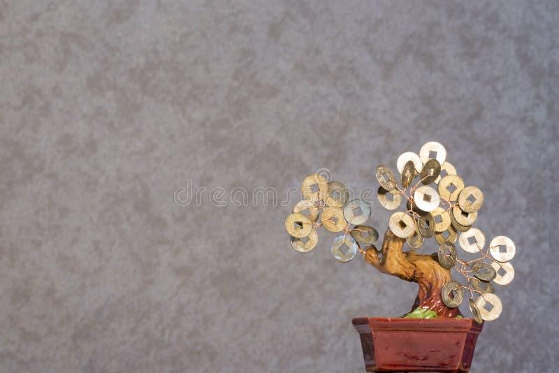 Östlig bakgrund 2019 för bonsai för stilpengarträd arkivbilder
