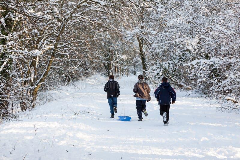 ÖSTLIG GRINSTEAD, VÄSTRA SUSSEX/UK - JANUARI 7: Vinterplats i Eas arkivfoton
