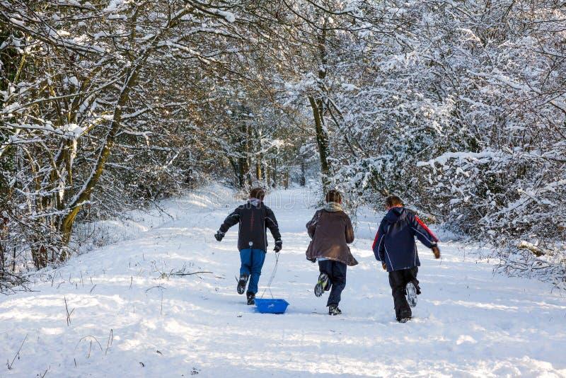 ÖSTLIG GRINSTEAD, VÄSTRA SUSSEX/UK - JANUARI 7: Vinterplats i Eas royaltyfria foton