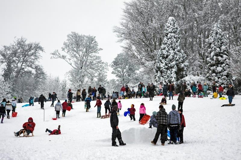 ÖSTLIG GRINSTEAD, VÄSTRA SUSSEX/UK - JANUARI 6: Vinterplats i Eas royaltyfria foton