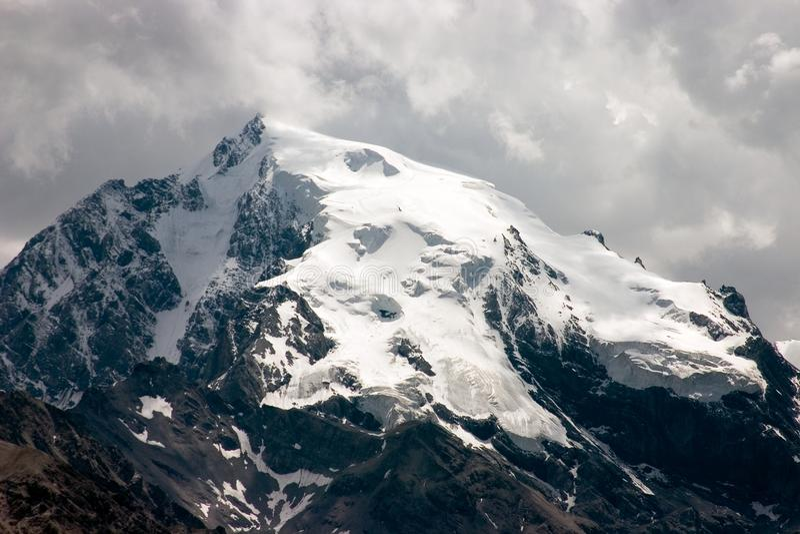 östlig högst bergortler för alps fotografering för bildbyråer