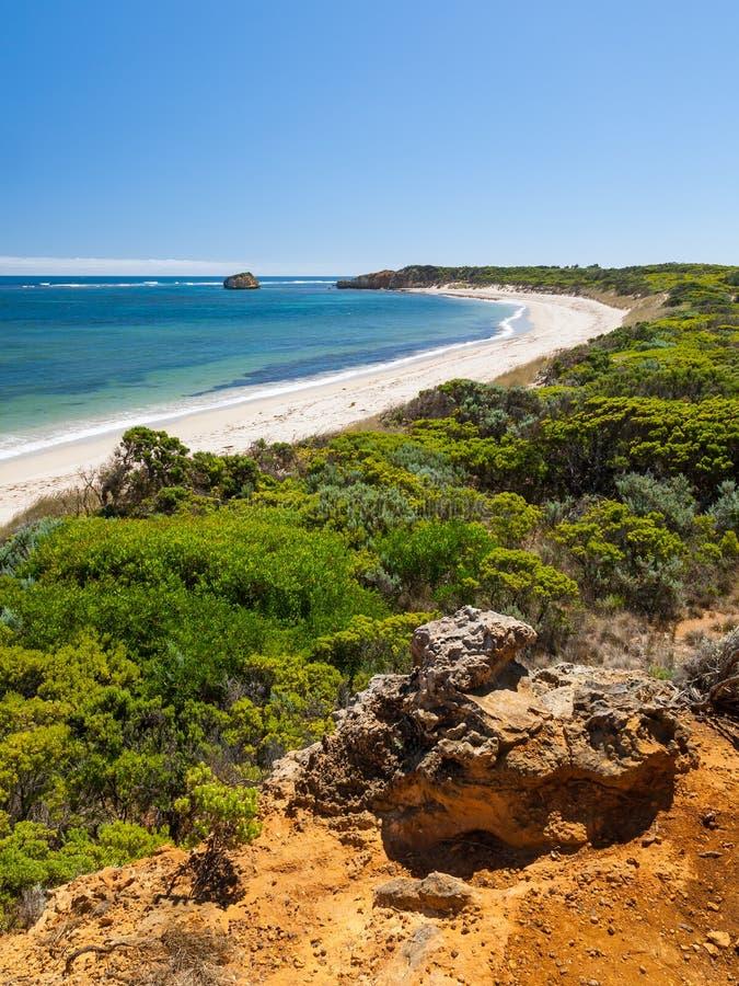 Östlig jordlappfjärd, Victoria, Australien royaltyfri bild