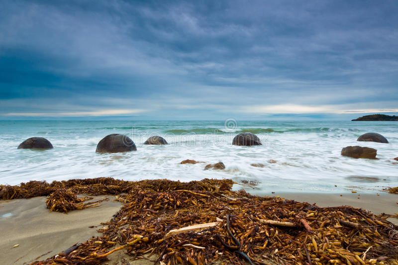 östlig moeraki nya södra zealand för stenblockkust arkivfoton