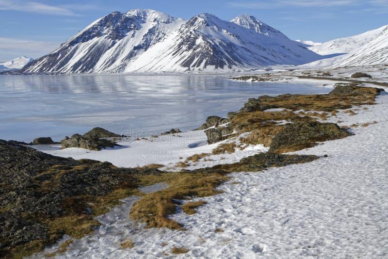 Östliga fjordar av Island arkivbild