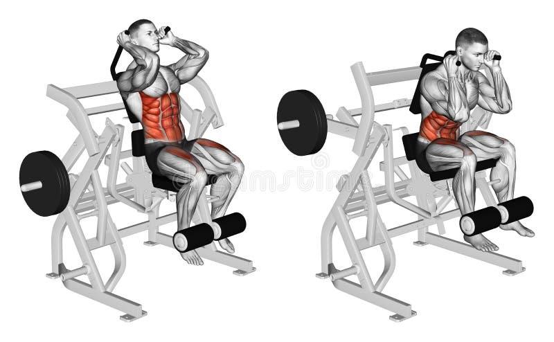 öva Böjande kropp till buk- muskler och ben stock illustrationer