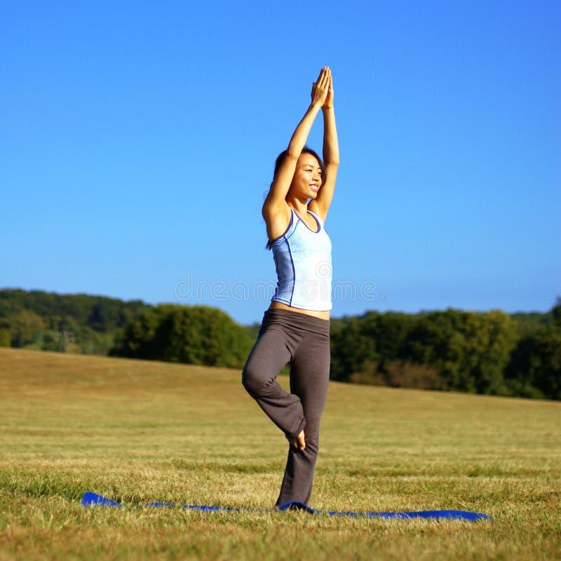 övande yoga för fältflicka arkivfoton