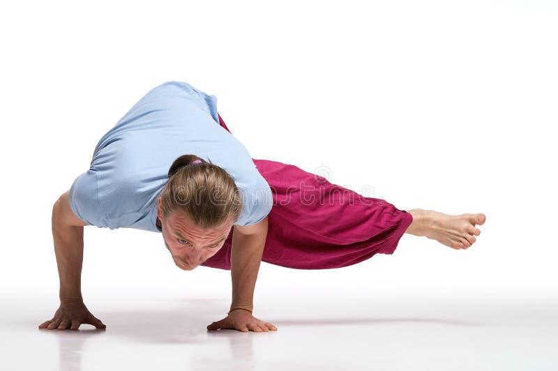 Övande yoga för skäggig longhair man Eka Pada Kaundiniasana poserar Isolerat på vit arkivbild